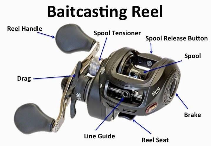Baitcasting Reels for beginners