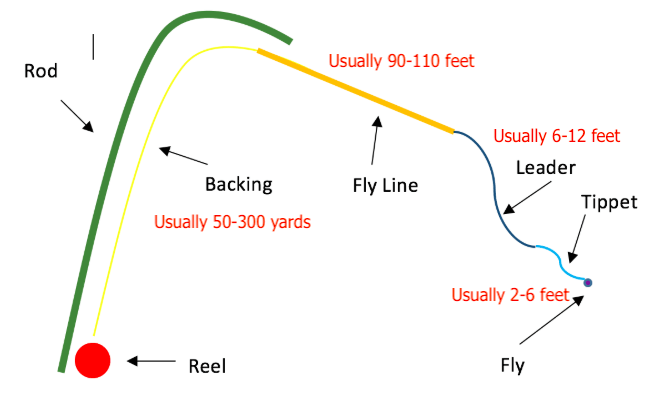 Set Up Fishing Line