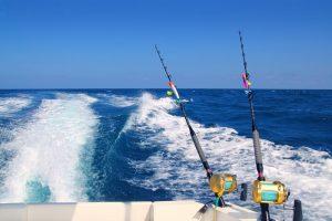 Best Deep Sea Fishing Rod and Reel Combo