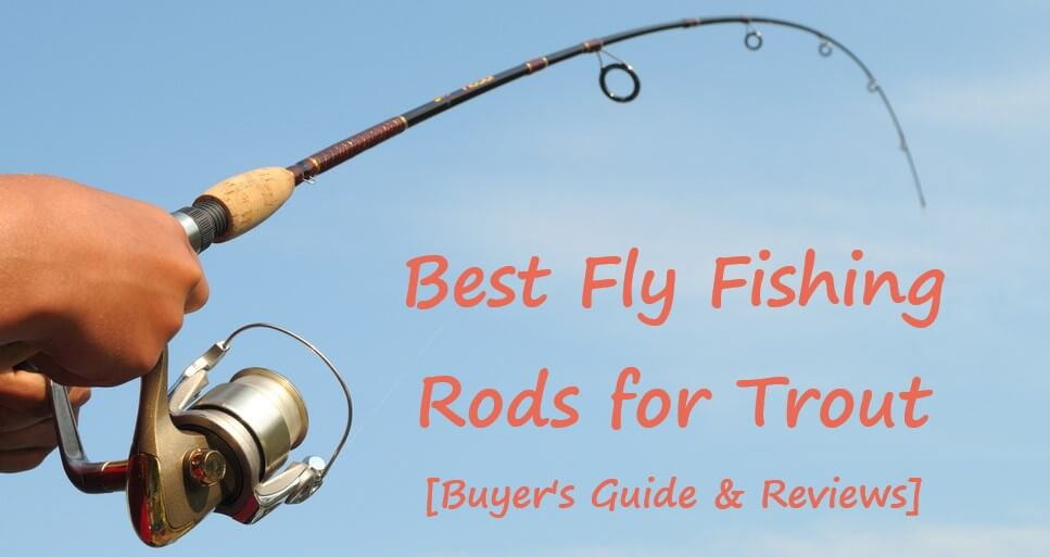 Best Fly Fishing Rods for Trout