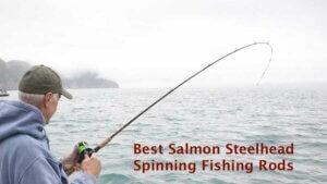 Best Salmon Steelhead Spinning Fishing Rods
