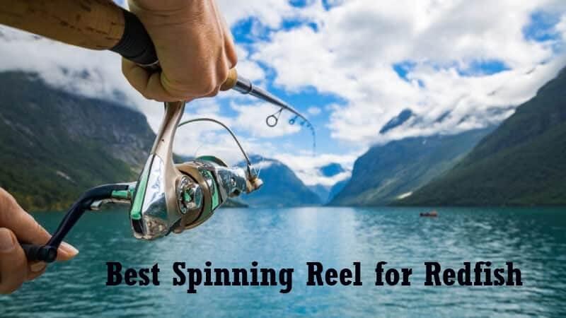 Best Spinning Reel for Redfish