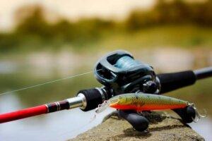 Best Baitcasting Reel for Redfish