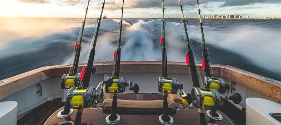 Choose a Fishing Rod